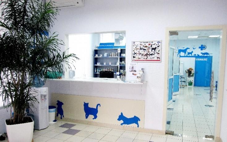 klinica